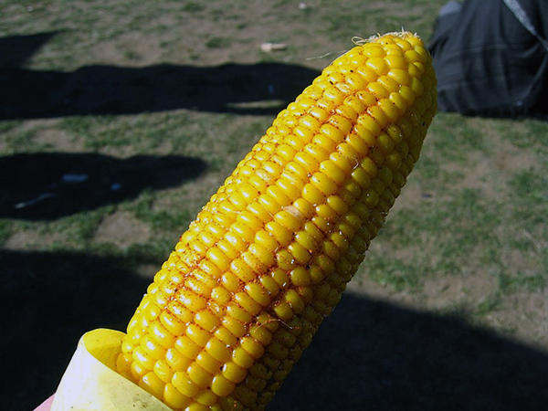 Makai Bhutta – Roasted Corn on Cob